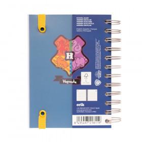 Disfraz de Indio para...
